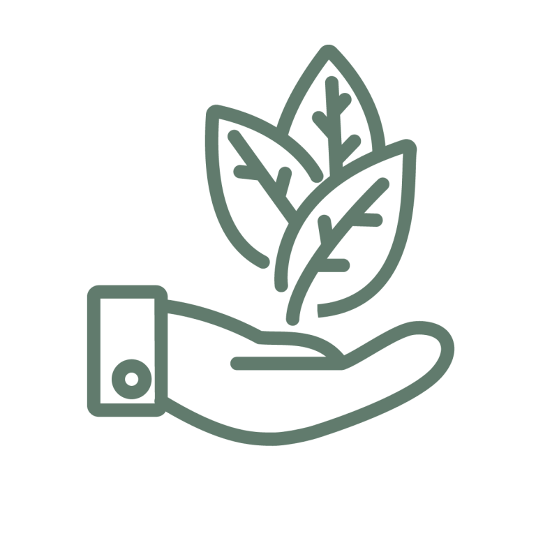 illustration representing sustainability and community showing a hand holding a plant representing sustainability and community